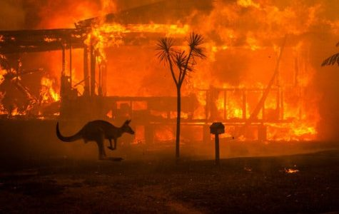 A Country in Flames