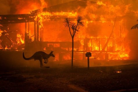 A house burning in Lake Conjola, New South Wales, on New Year's Eve.