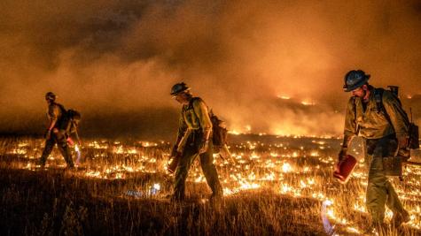 Colorado's in Danger: