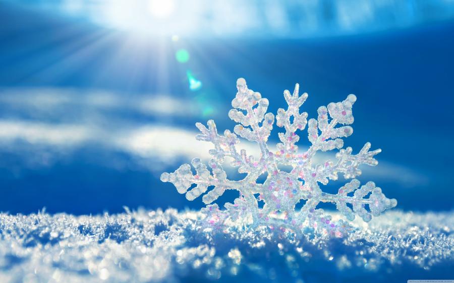 Winter Activities and Coronavirus Continuing to Surge