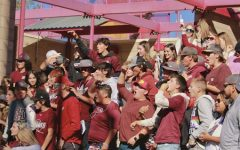 Softball Made Fourth in State